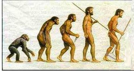 evolution0